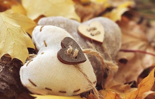 Heart Autumn Leaves True - Free photo on Pixabay (255406)