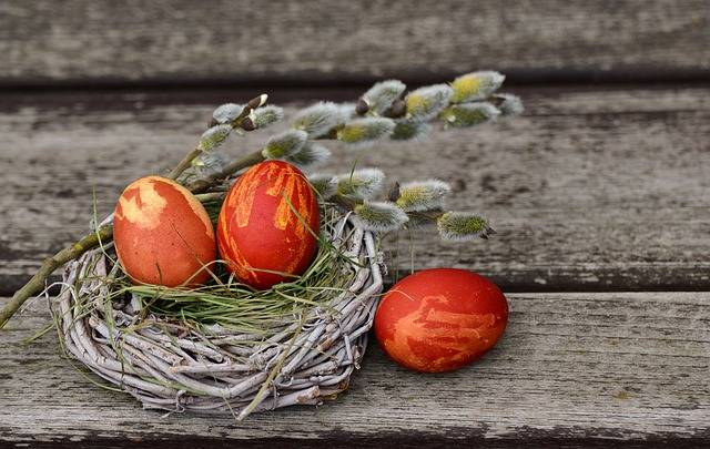 Easter Eggs Nest - Free photo on Pixabay (260167)