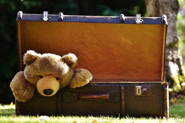Luggage Antique Teddy Soft - Free photo on Pixabay (265598)