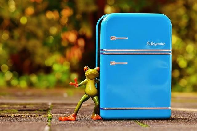 Frog Refrigerator Blue - Free photo on Pixabay (268731)