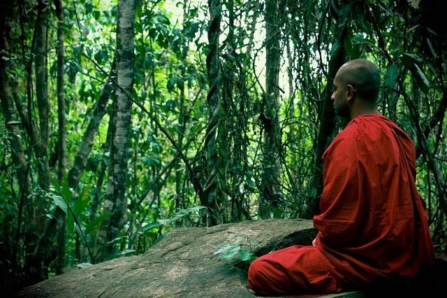 Meditation Bhikkhu Mahamevnawa Sri - Free photo on Pixabay (270270)