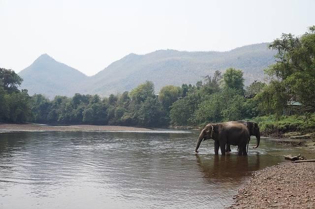 Thailand Asia Southeast - Free photo on Pixabay (270273)