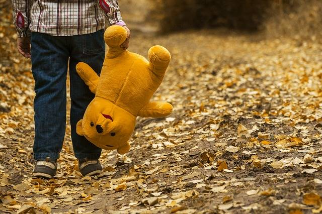 Child Teddy Bear Autumn - Free photo on Pixabay (272908)