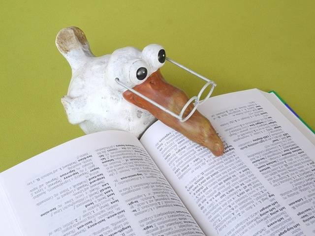 School Book Knowledge - Free photo on Pixabay (273477)
