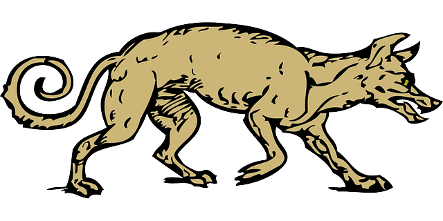 Coyote Wolf Animal - Free vector graphic on Pixabay (284584)