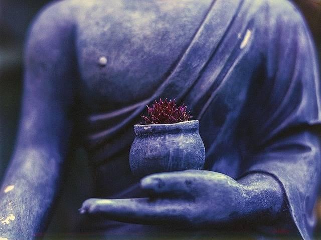 Buddha Plant Religion - Free photo on Pixabay (293807)