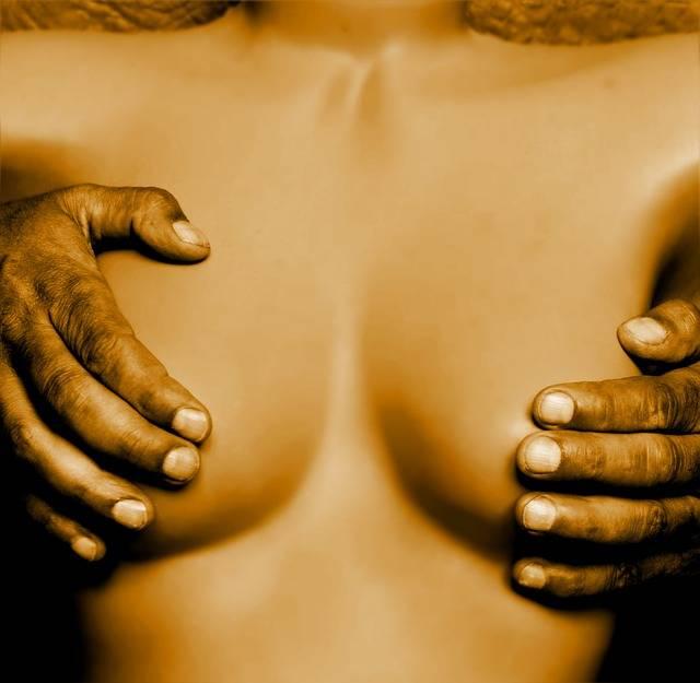 Woman Economy Breast - Free photo on Pixabay (293825)