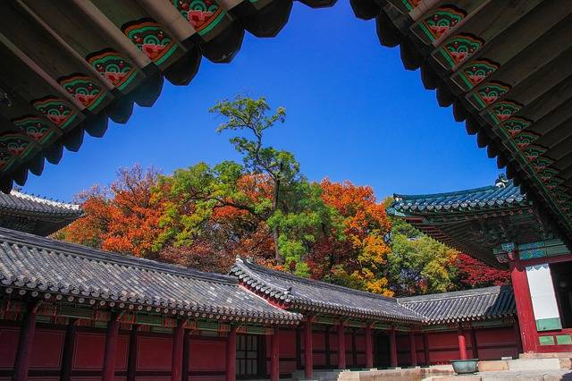 Changdeokgung Secret Garden - Free photo on Pixabay (294054)
