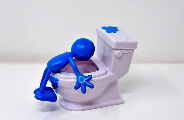 Loo Toilet Smiley - Free photo on Pixabay (297964)