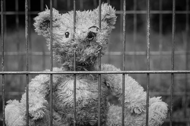 Teddy Bear Lost - Free photo on Pixabay (298455)
