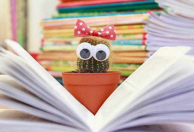 Cactus Book Flower - Free photo on Pixabay (299757)