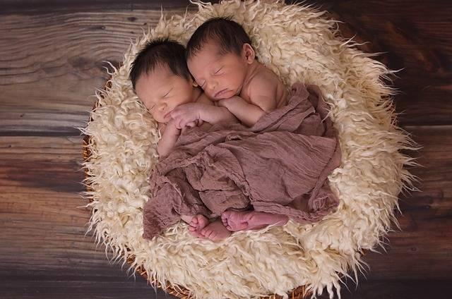 Twins Boys Babies - Free photo on Pixabay (301660)