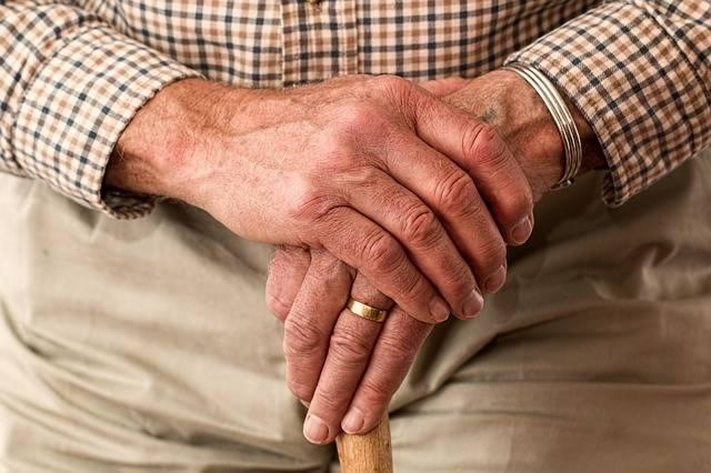 Hands Walking Stick Elderly Old - Free photo on Pixabay (302282)