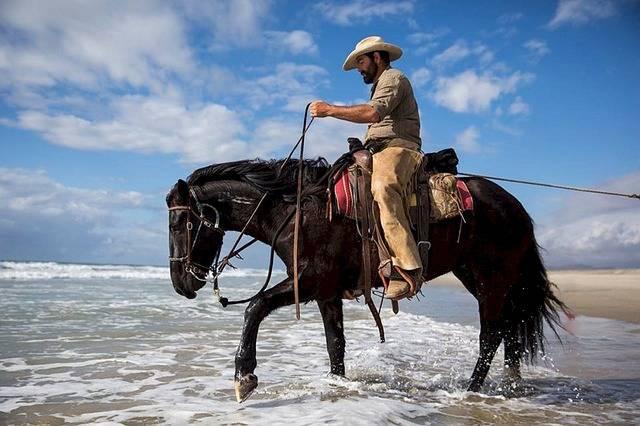 Cowboy Horse Riding - Free photo on Pixabay (303367)