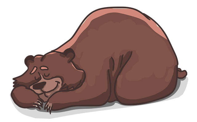 Bear Lies Sleeps - Free image on Pixabay (304662)