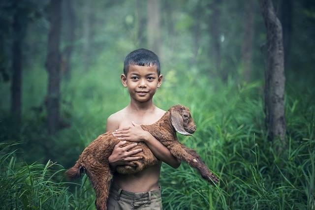 Boys Outdoor Thailand - Free photo on Pixabay (308768)