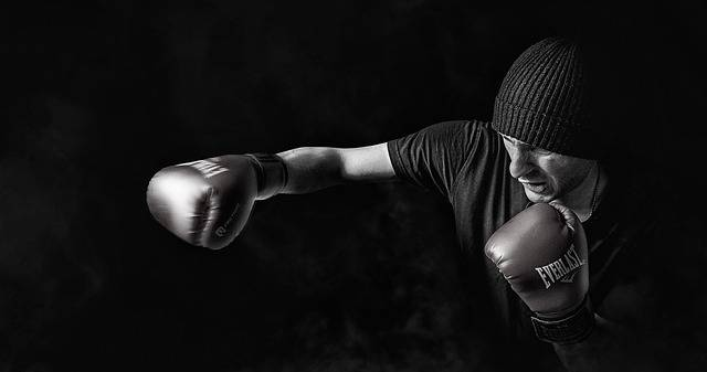 Box Sport Men - Free photo on Pixabay (310918)