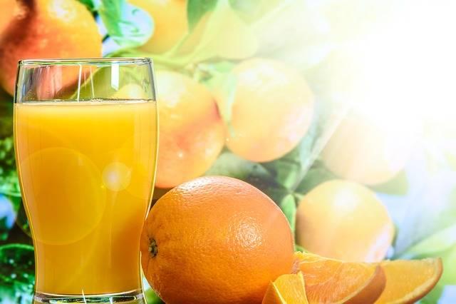 Orange Juice Cup Tree The - Free photo on Pixabay (316396)