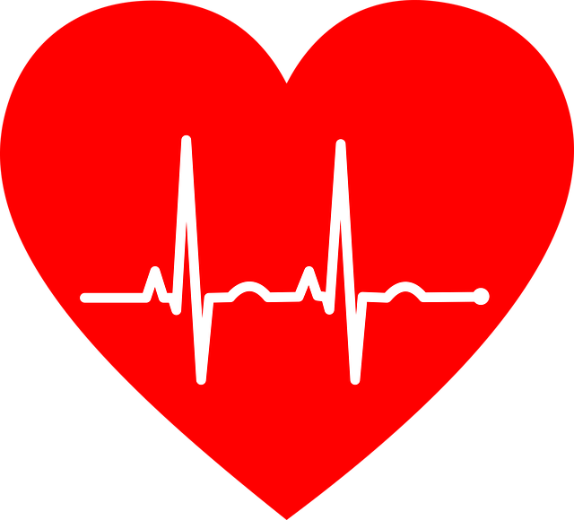 Ekg Electrocardiogram Heart - Free vector graphic on Pixabay (316751)