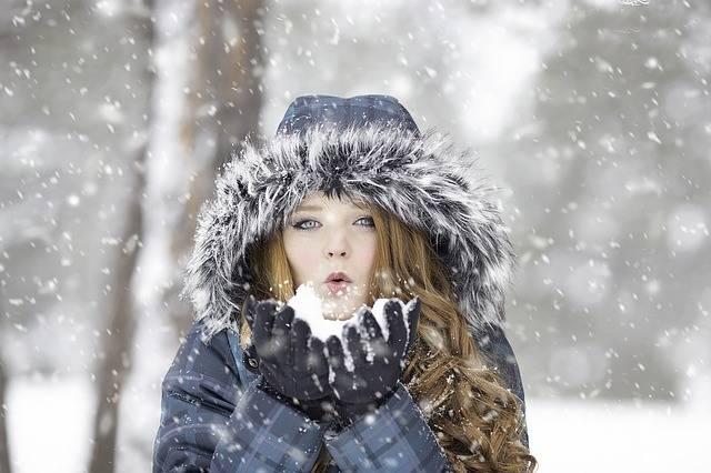 Winter Redhead Female - Free photo on Pixabay (322170)