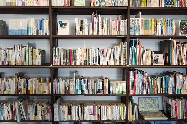 Books Bookshelf Library - Free photo on Pixabay (322305)