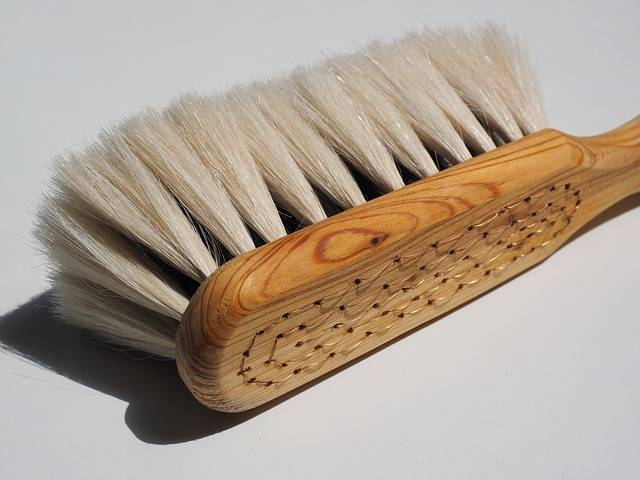 Brush Goat Hair - Free photo on Pixabay (325950)