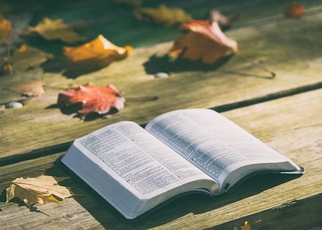 Bible Book Knowledge - Free photo on Pixabay (326027)
