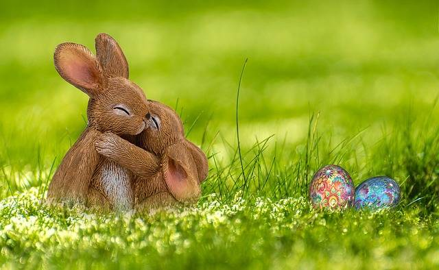 Easter Bunny Egg - Free photo on Pixabay (326328)