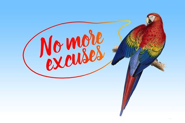 Excuse Me Balloon Parrot - Free image on Pixabay (326560)
