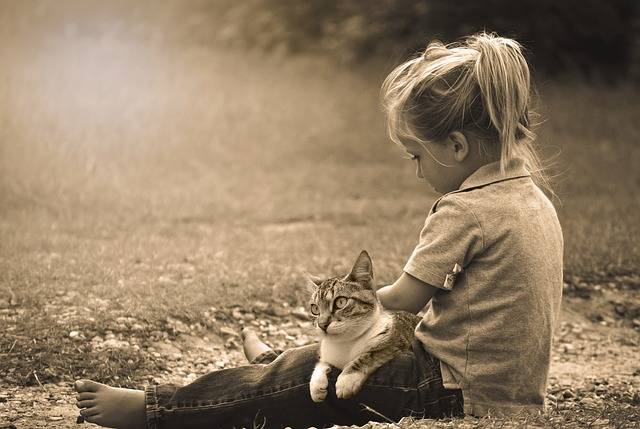 Child Play Happy - Free photo on Pixabay (330306)