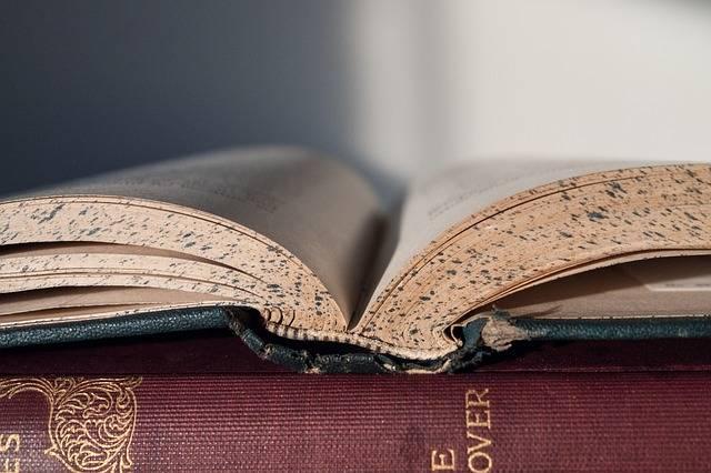 Book Reading Literature - Free photo on Pixabay (331000)
