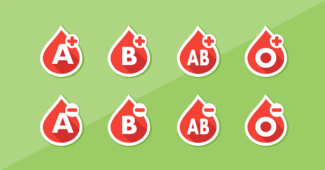 Blood Type List - Free vector graphic on Pixabay (331001)