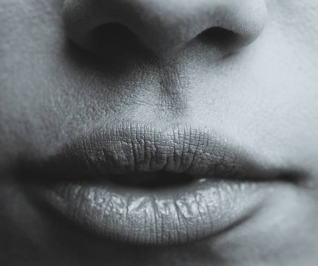 Lips Seduction Sexy - Free photo on Pixabay (331516)