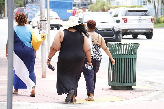 Obesity Fat Nutritionist - Free photo on Pixabay (332773)