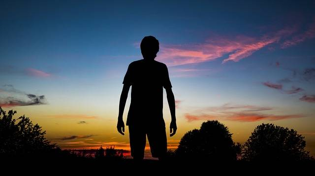 Silhouette Person Man - Free photo on Pixabay (333271)