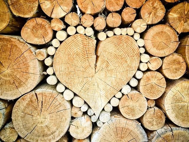 Heart Wood Logs Combs Thread - Free photo on Pixabay (334194)