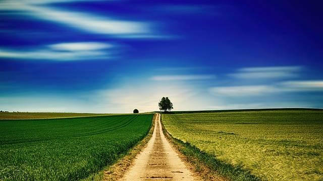 Sky Panorama Field - Free photo on Pixabay (341705)
