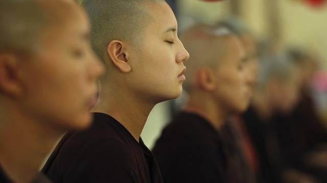 Theravada Buddhism Buddhist Nuns - Free photo on Pixabay (341878)