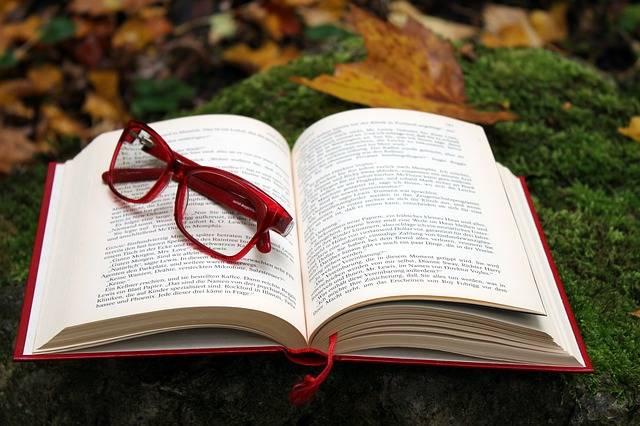 Book Read Literature - Free photo on Pixabay (348289)