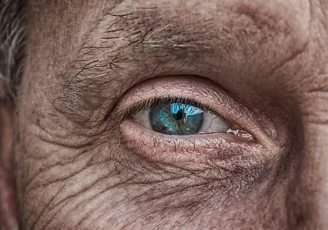 Skin Eye Iris - Free photo on Pixabay (352088)
