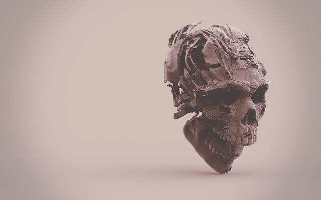 Skeleton Skull - Free photo on Pixabay (355483)