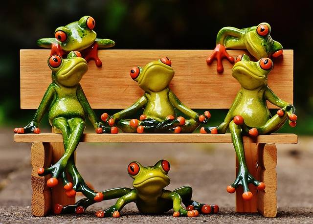 Frogs Sociable Bank - Free photo on Pixabay (356281)