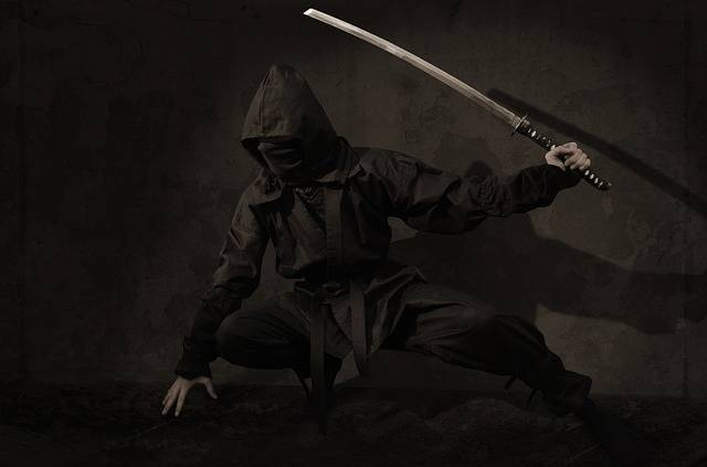 Ninja Warrior Japan - Free photo on Pixabay (356828)