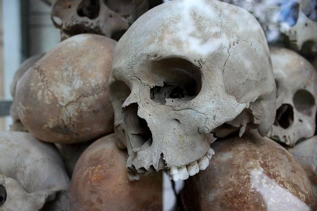 Skulls Genocide Murder - Free photo on Pixabay (357608)