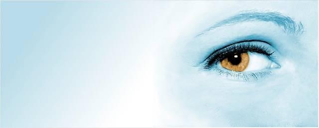 Eye Woman Face - Free photo on Pixabay (358905)