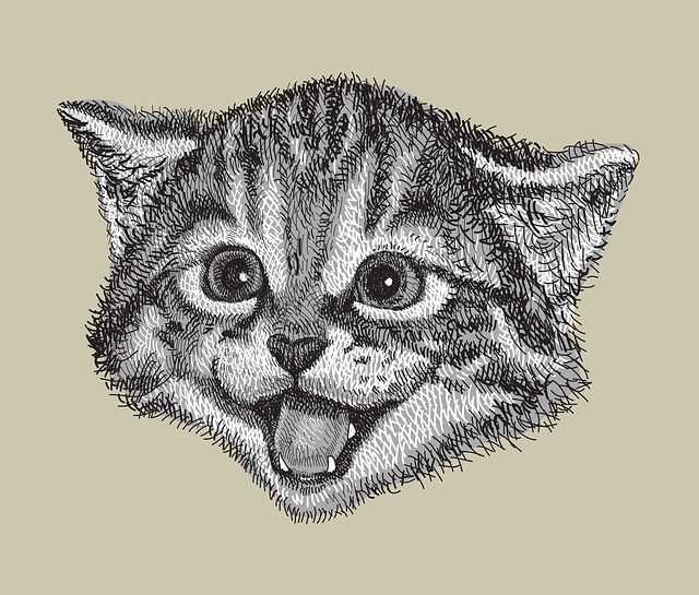 Cat Drawing Hand Drawn - Free vector graphic on Pixabay (359052)