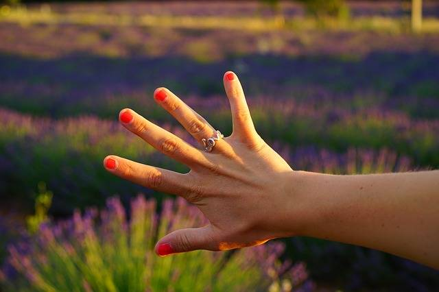 Hand Finger Ring - Free photo on Pixabay (359787)
