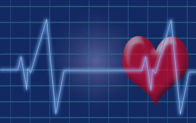 Heartbeat Pulse Heart - Free image on Pixabay (364666)