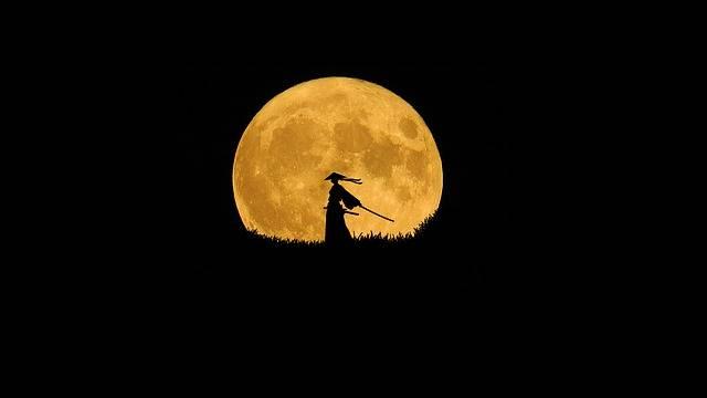 Samurai Silhouette Art Lone - Free photo on Pixabay (366996)