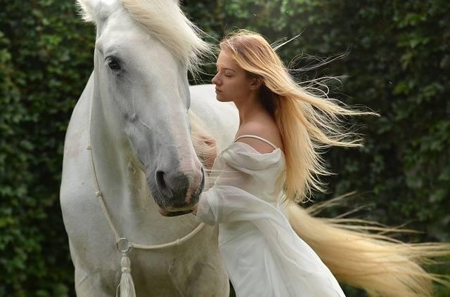 Girl Daydreaming Horse - Free photo on Pixabay (372150)